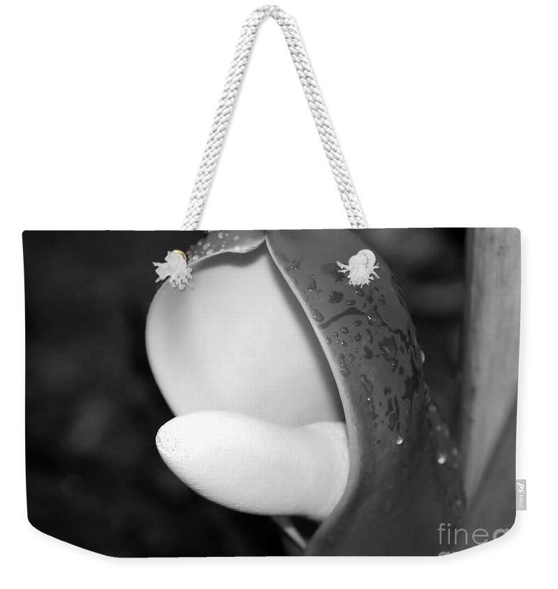 Flower Weekender Tote Bag featuring the photograph Flowering by David Lee Thompson