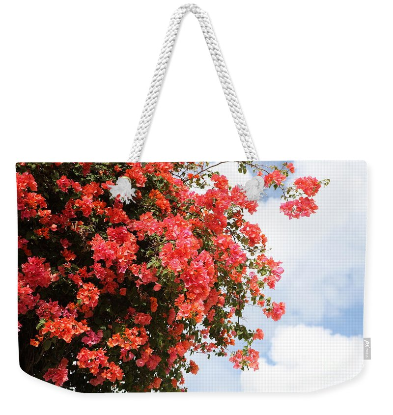 Hawaii Weekender Tote Bag featuring the photograph Flowering Tree by Nadine Rippelmeyer
