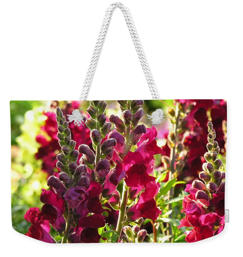 Flowers Weekender Tote Bag featuring the photograph Flowers by Diane Greco-Lesser