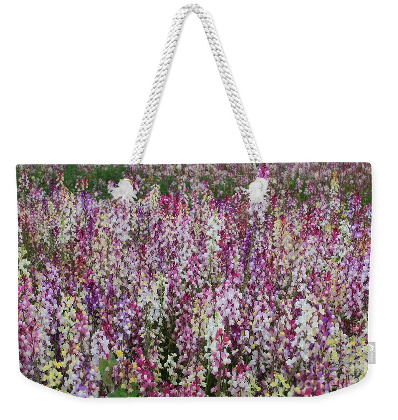 Field Of Flowers Weekender Tote Bag featuring the photograph Flowers Forever by Carol Groenen