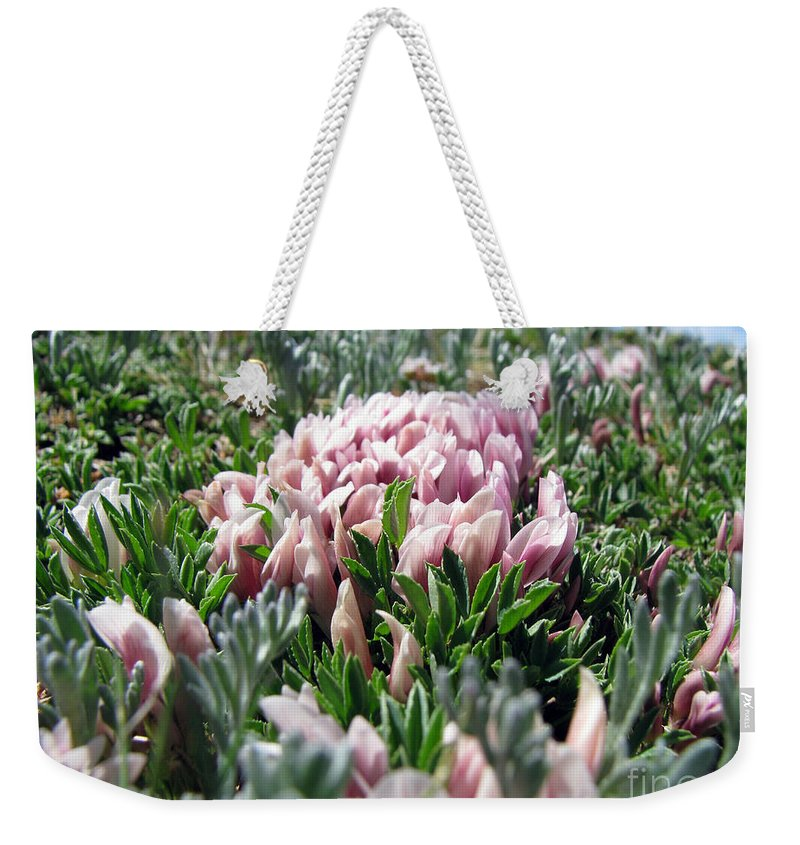 Flowers Weekender Tote Bag featuring the photograph Flowers In The Alpine Tundra by Amanda Barcon