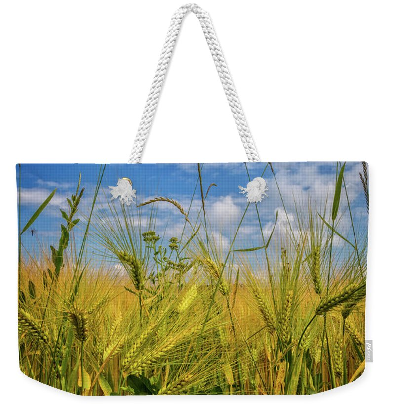 Appalachia Weekender Tote Bag featuring the photograph Flowers In The Wheat by Debra and Dave Vanderlaan