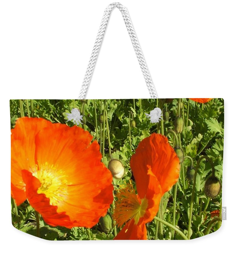 Flowers Weekender Tote Bag featuring the photograph Flowers by Shari Chavira
