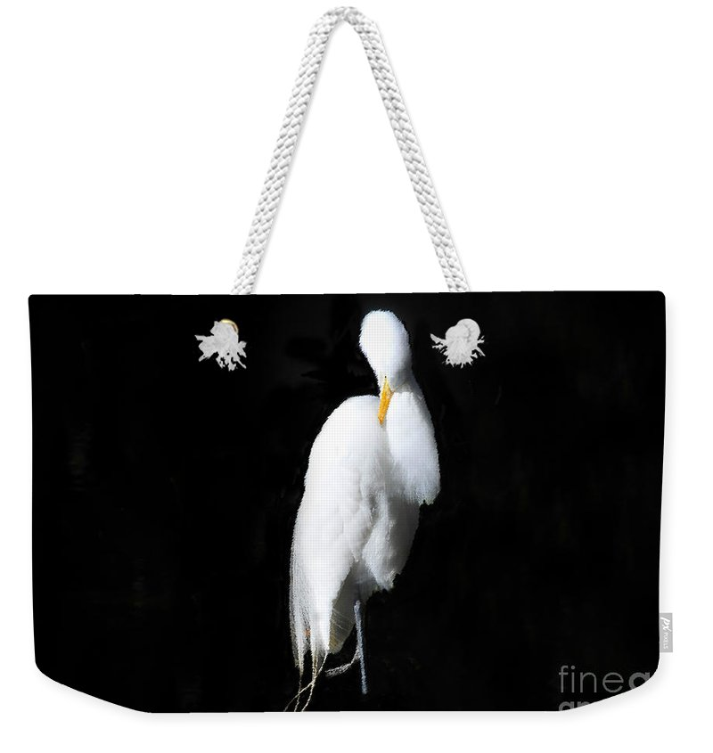 Fluffing Weekender Tote Bag featuring the painting Fluffing by David Lee Thompson