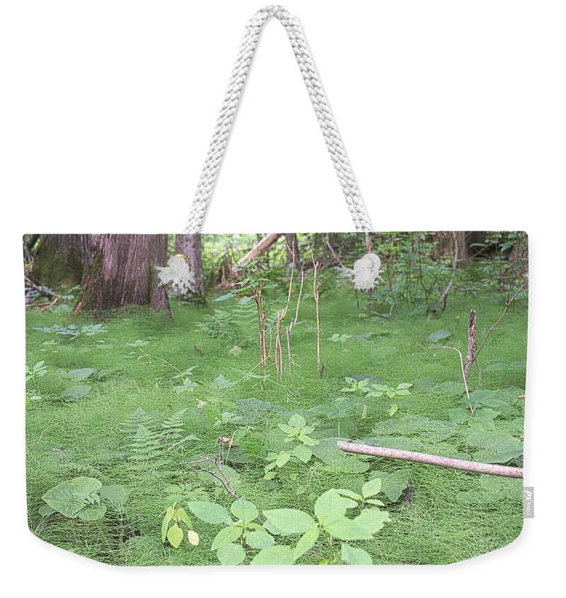 Ferns Weekender Tote Bag featuring the photograph Fluffy Ferns by Timothy Ruf