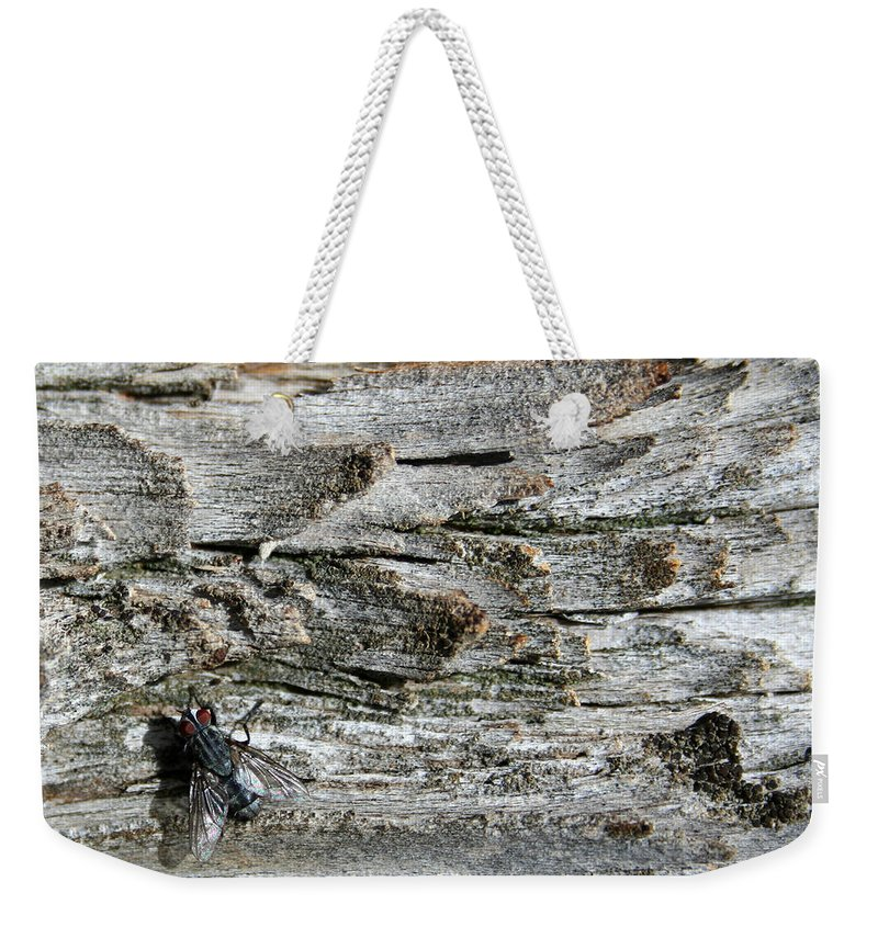 Abstract Weekender Tote Bag featuring the photograph Fly On Wood by Ric Bascobert