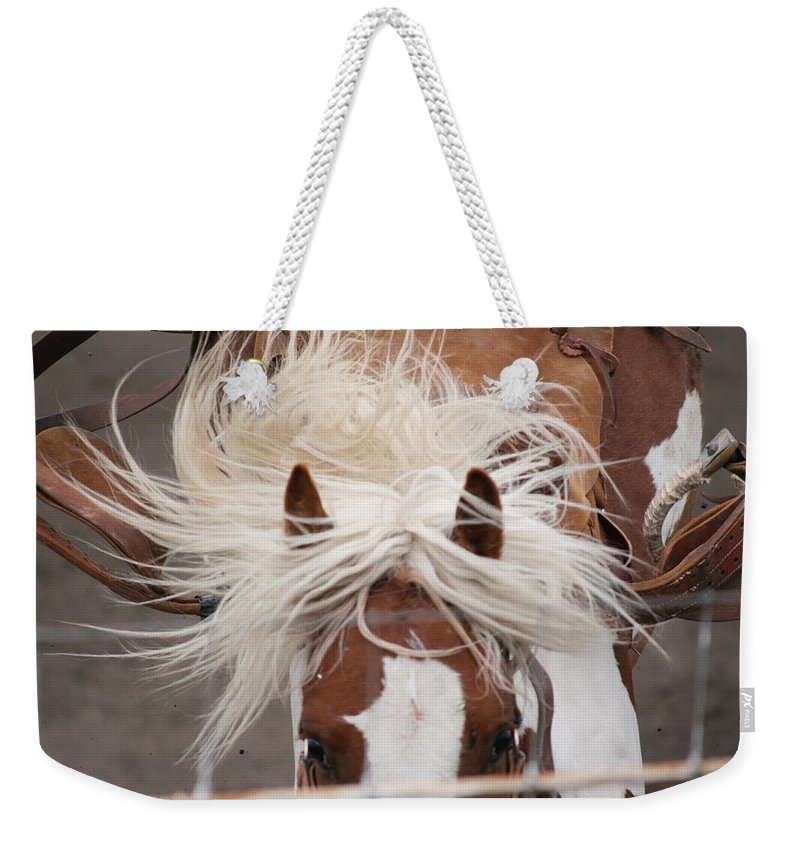 Horse Bronc Rodeo Saddle Rider Close Show Horses Wild Weekender Tote Bag featuring the photograph Flyin Bronc by Andrea Lawrence