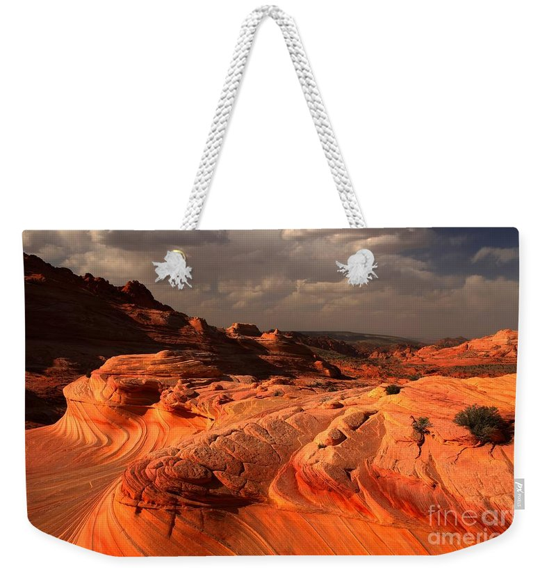 The Wave Weekender Tote Bag featuring the photograph Flying Dragon by Adam Jewell