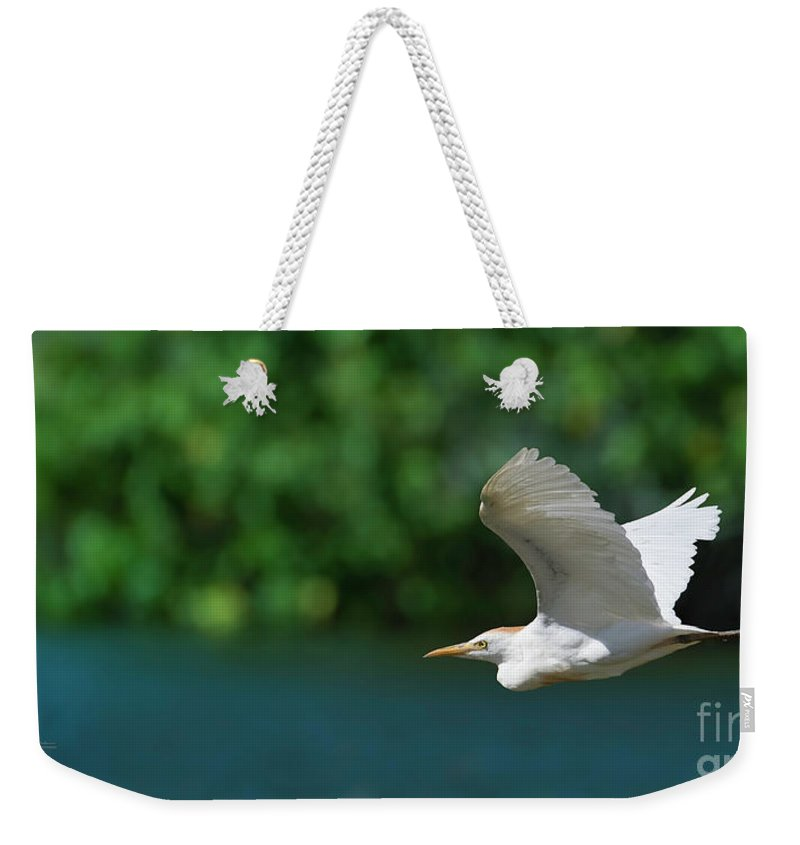 Egret Weekender Tote Bag featuring the photograph Flying Free by Tracy Saunders