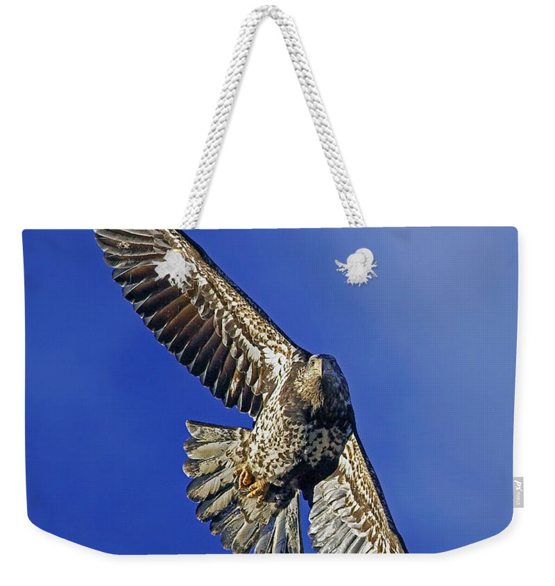 Bald Eagle Weekender Tote Bag featuring the photograph Flying High by Randall Ingalls