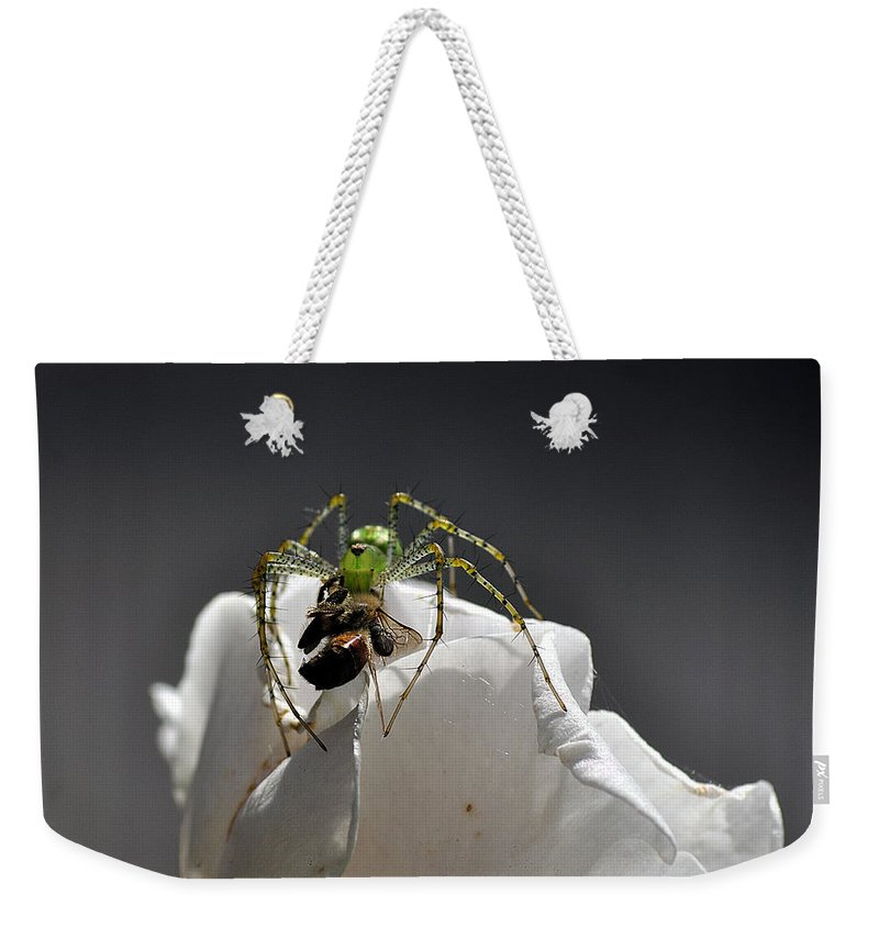Clay Weekender Tote Bag featuring the photograph Flys At The Picnic by Clayton Bruster