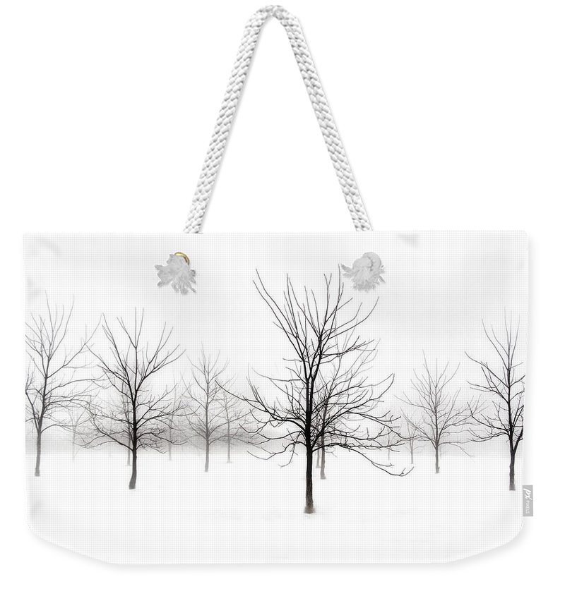 Black Walnut Trees Weekender Tote Bag featuring the photograph Fog And Winter Black Walnut Trees by Angie Rea
