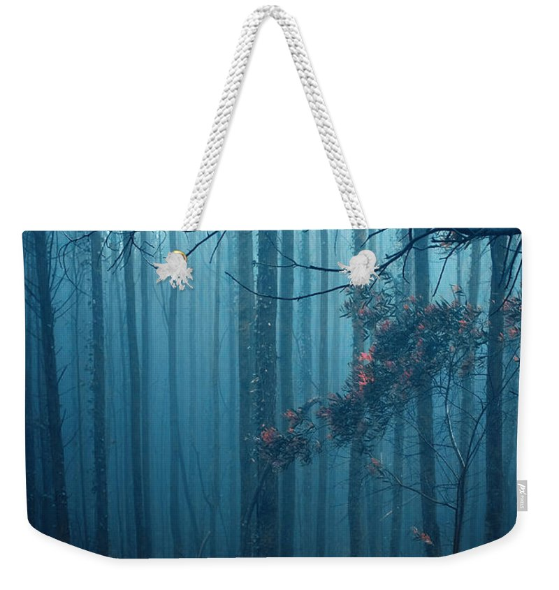 Nobody Weekender Tote Bag featuring the photograph Foggy Forest by Carlos Caetano