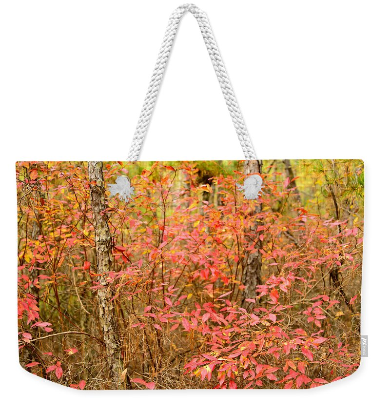 Autumn Weekender Tote Bag featuring the photograph Foliage On Fire by Louis Dallara