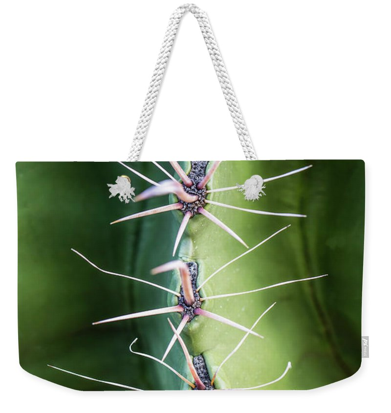 Cactus Weekender Tote Bag featuring the photograph Follow The Leader by Nancy Forehand