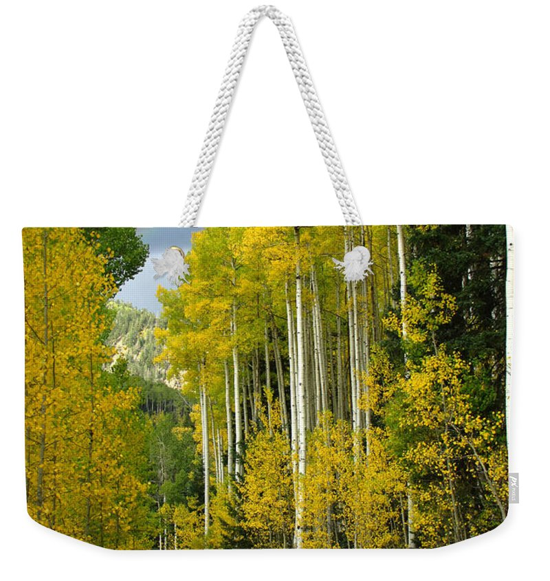 Aspen Weekender Tote Bag featuring the photograph Follow the Rainbow to Colorado Gold by Carol Milisen