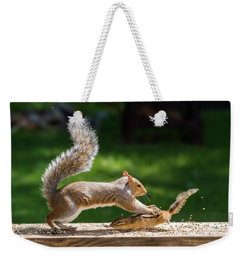 Terry D Photography Weekender Tote Bag featuring the photograph Food Fight Squirrel And Chipmunk by Terry DeLuco