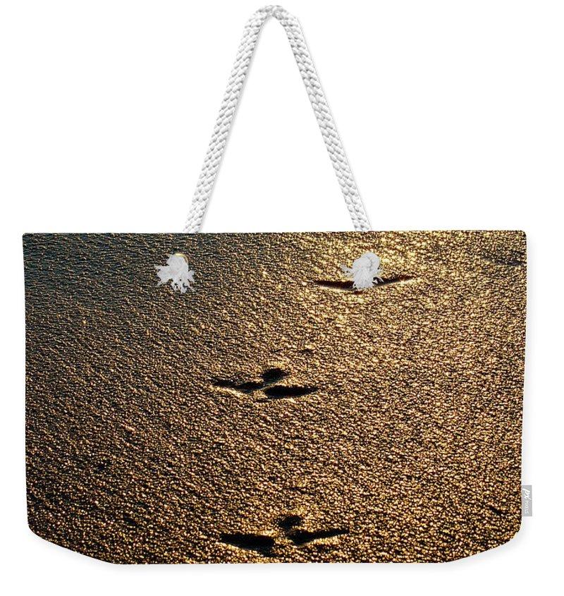 Sand Weekender Tote Bag featuring the photograph Footprints - Bird by Jill Reger