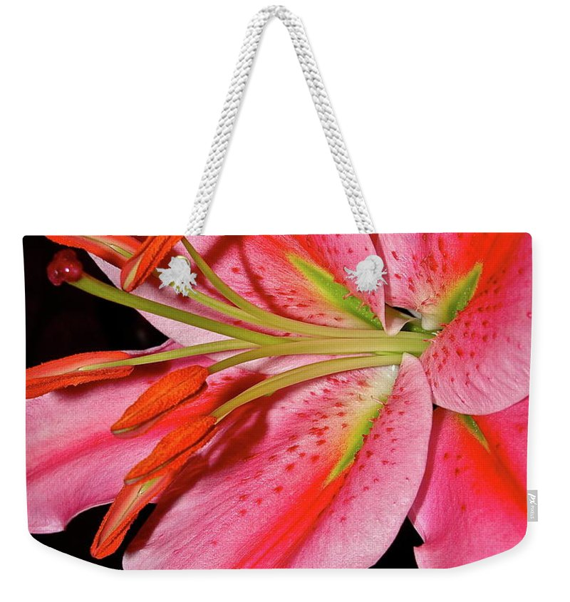 Flowers Weekender Tote Bag featuring the photograph For Mom by Diana Hatcher