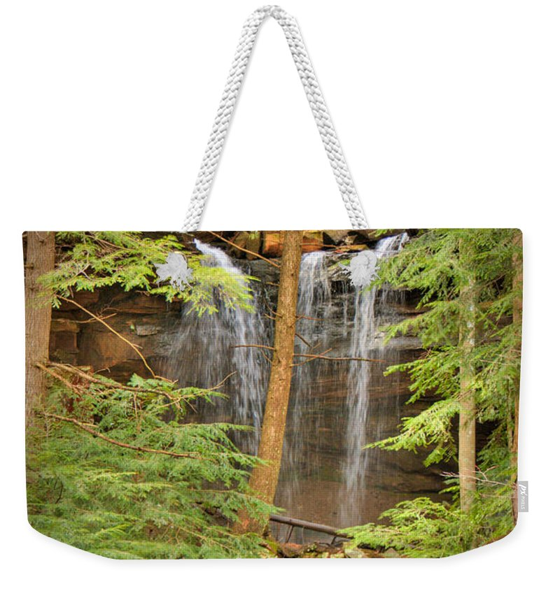 Forest Weekender Tote Bag featuring the photograph Forest Falls by Douglas Barnett