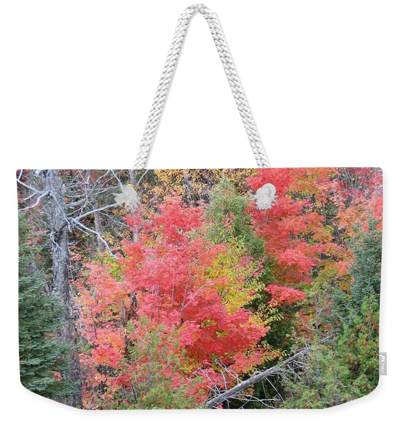 Fall Weekender Tote Bag featuring the photograph Forest Fire by Kelly Mezzapelle