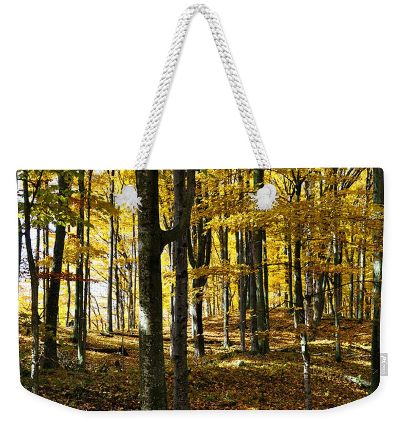 Trees Weekender Tote Bag featuring the photograph Forest Floor One by Tim Nyberg