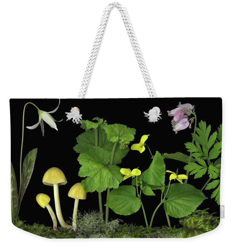Pacific Northwest Native Species; Fawn Lily Weekender Tote Bag featuring the digital art Forest Floor by Sandi F Hutchins