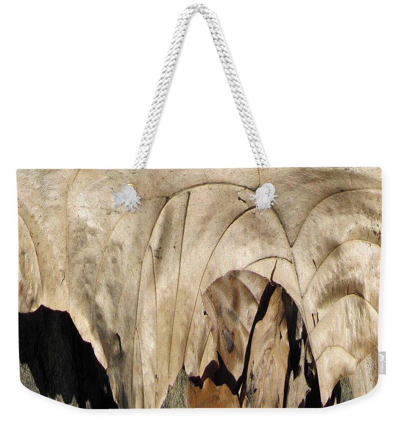 Forest Weekender Tote Bag featuring the digital art Forest Floor by Tim Allen