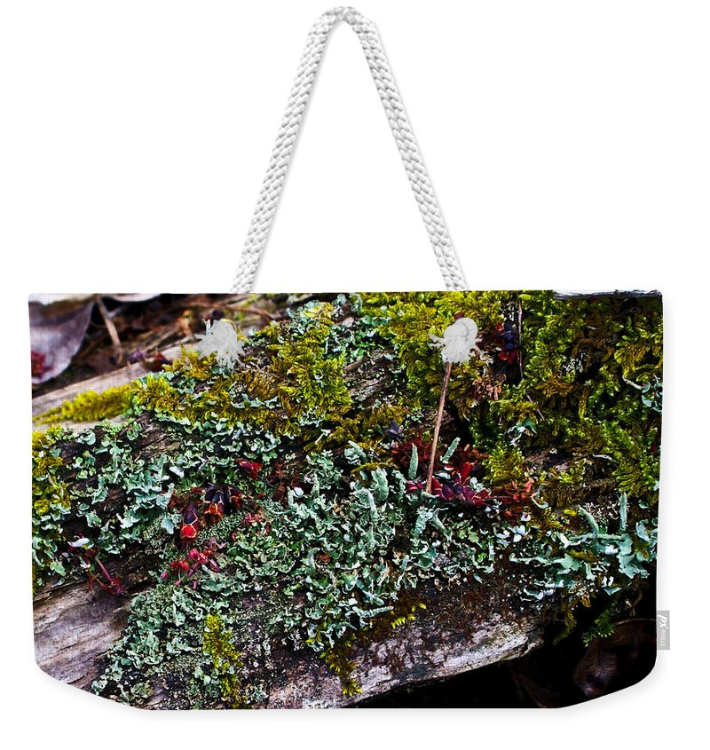 Forest Weekender Tote Bag featuring the photograph Forest Floral Delight by Douglas Barnett
