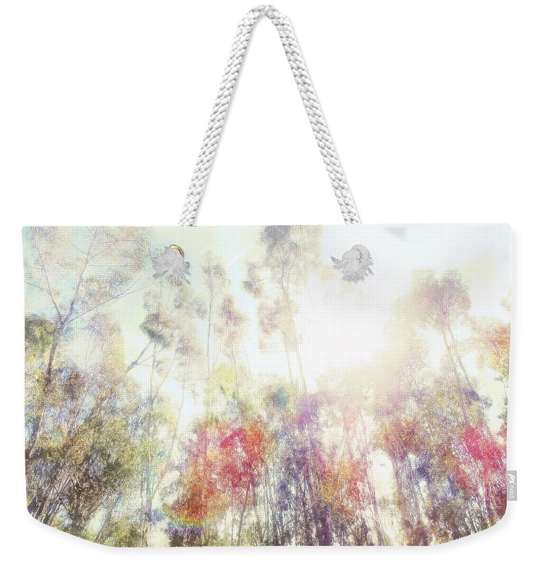 Forest Weekender Tote Bag featuring the photograph Forest Light by Davy Cheng