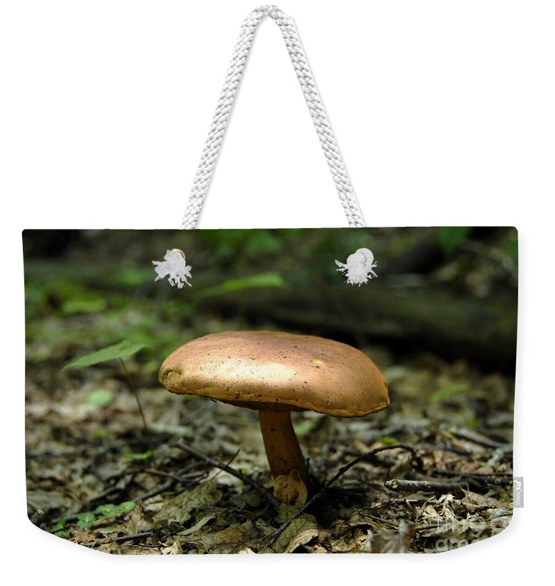 Forest Weekender Tote Bag featuring the photograph Forest Mushroom by David Lee Thompson