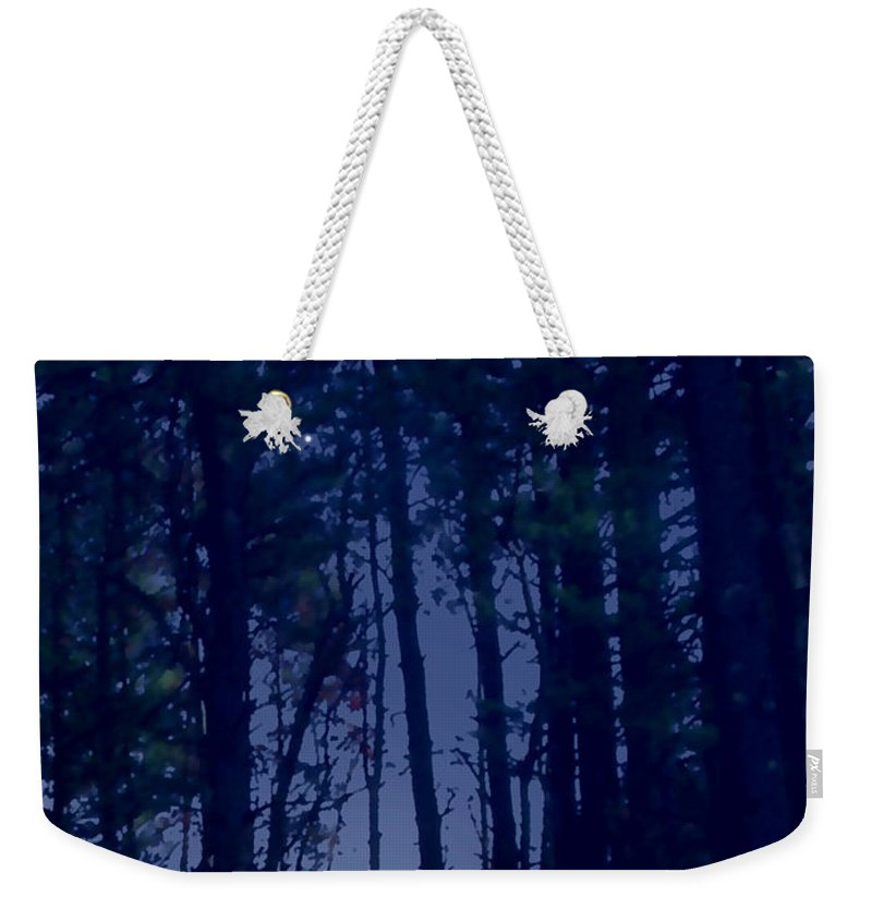 Forest Weekender Tote Bag featuring the painting Forest Starlight by Paul Sachtleben