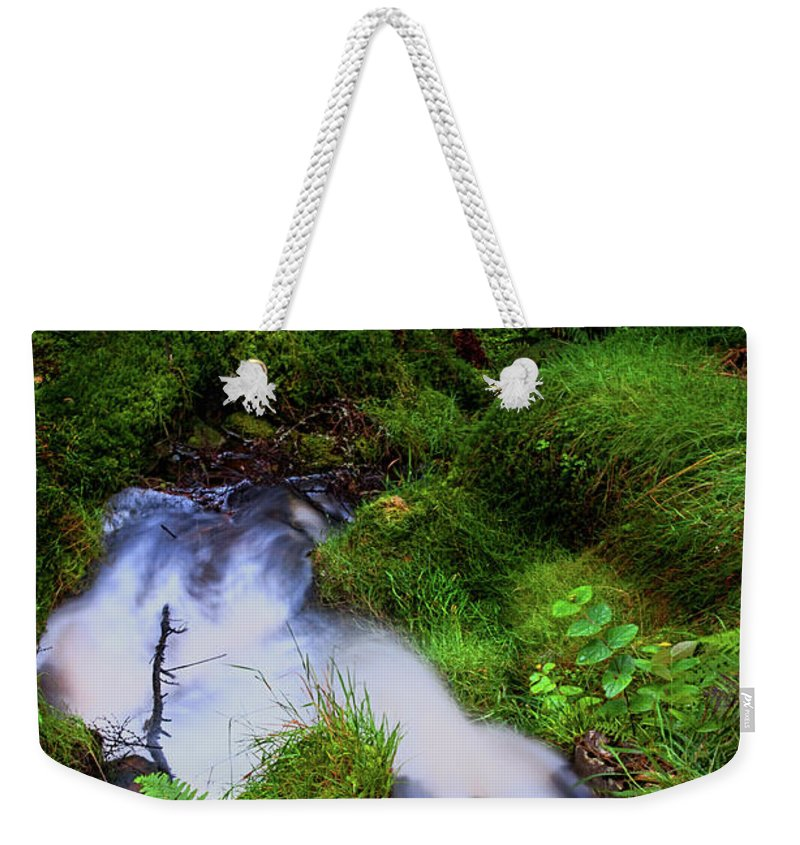 Jenny Rainbow Fine Art Photography Weekender Tote Bag featuring the photograph Forest Stream. Benmore Botanic Garden by Jenny Rainbow
