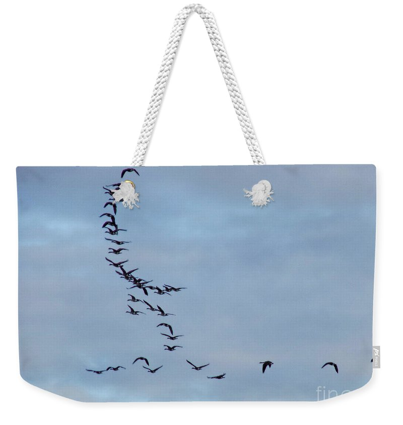 Geese Weekender Tote Bag featuring the photograph Formation Needs Work by William Tasker