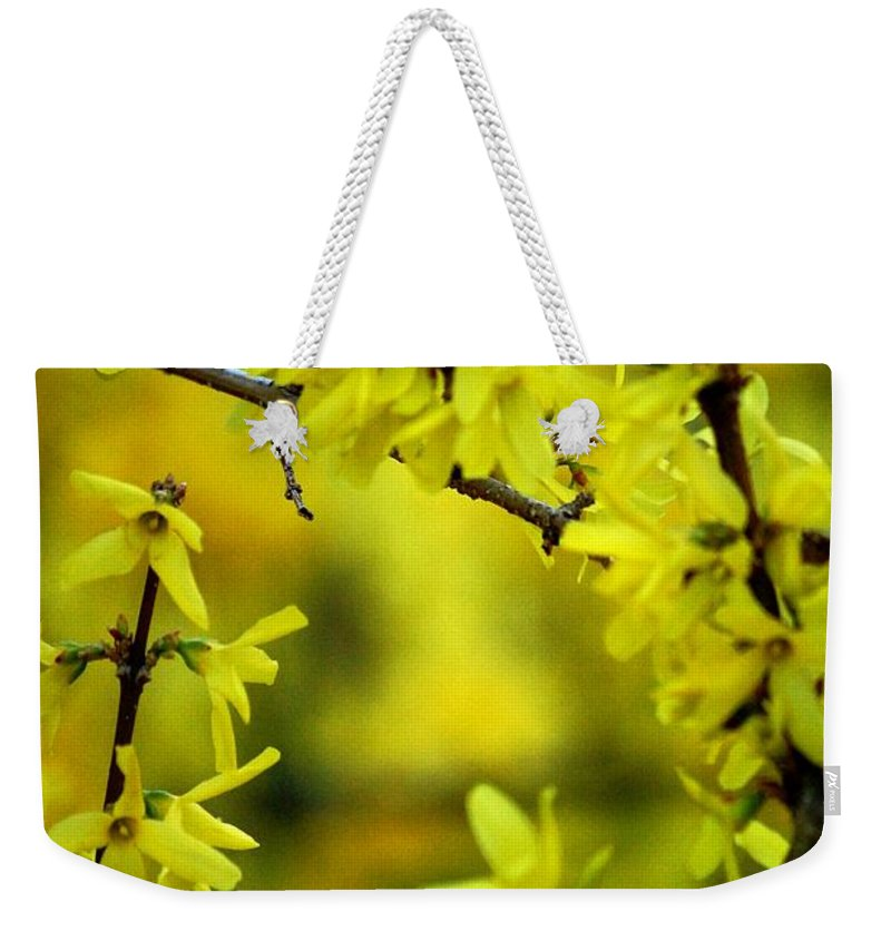Spring Weekender Tote Bag featuring the photograph Forsythia At The Hacienda by David Lane