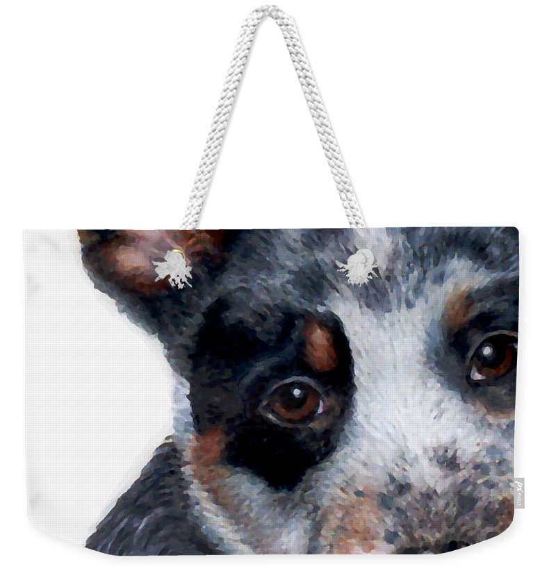 Australian Cattle Dog Weekender Tote Bag featuring the drawing Foster Detail by Kristen Wesch