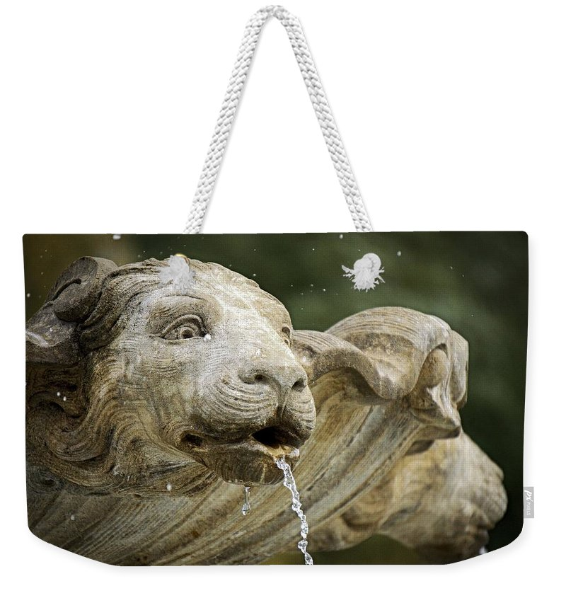 Fountain Weekender Tote Bag featuring the photograph Fountain Detail by LuAnn Griffin