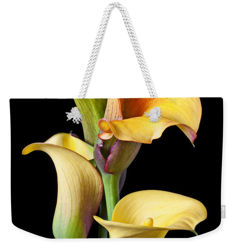 Calla Lily Weekender Tote Bag featuring the photograph Four Calla Lilies by Garry Gay