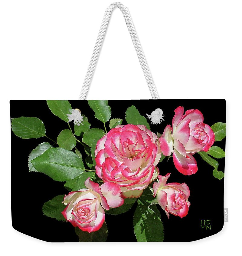 Cutout Weekender Tote Bag featuring the photograph Four Roses Cutout by Shirley Heyn