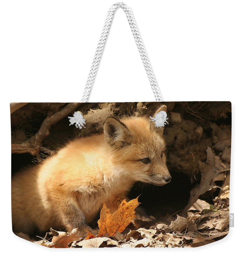 Red Fox Weekender Tote Bag featuring the photograph Fox Kit At Entrance To Den by Doris Potter