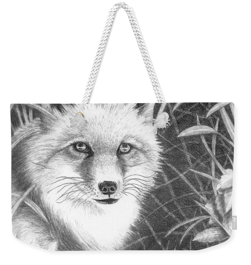 Wildlife Weekender Tote Bag featuring the drawing Fox by Lawrence Tripoli