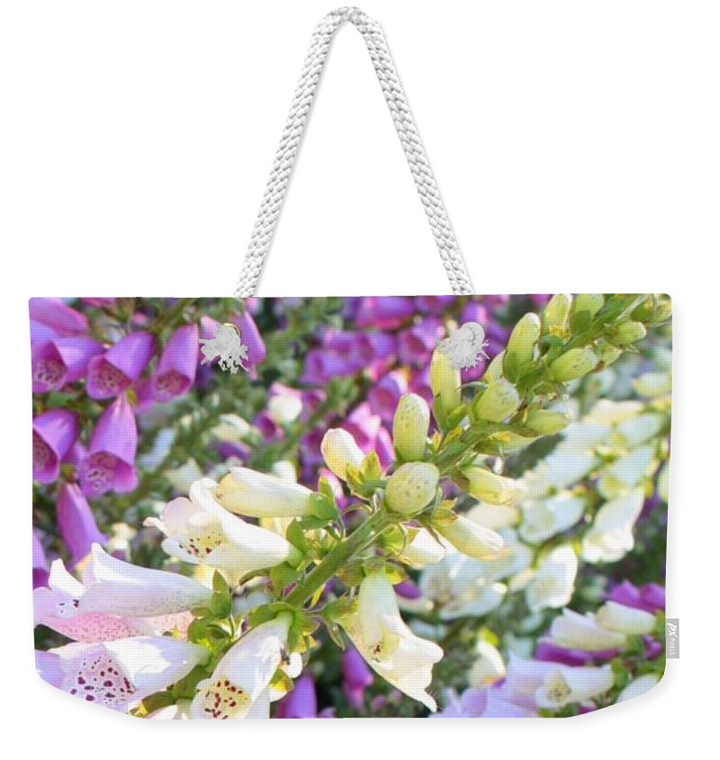 Card Weekender Tote Bag featuring the photograph Foxglove Card by Carol Groenen
