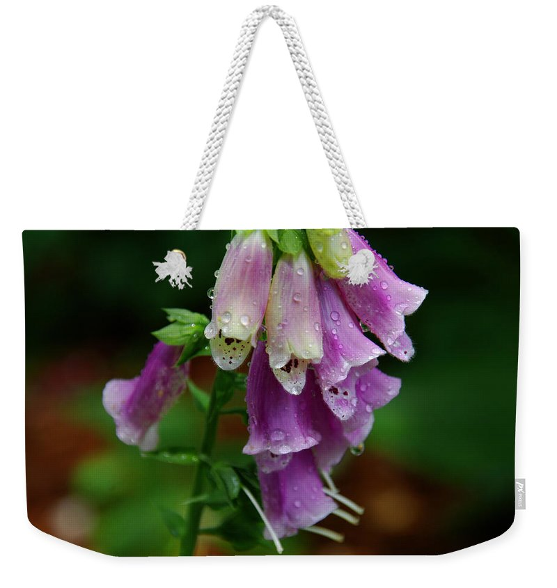 Foxglove Weekender Tote Bag featuring the photograph Foxgloves In The Rain by Susanne Van Hulst