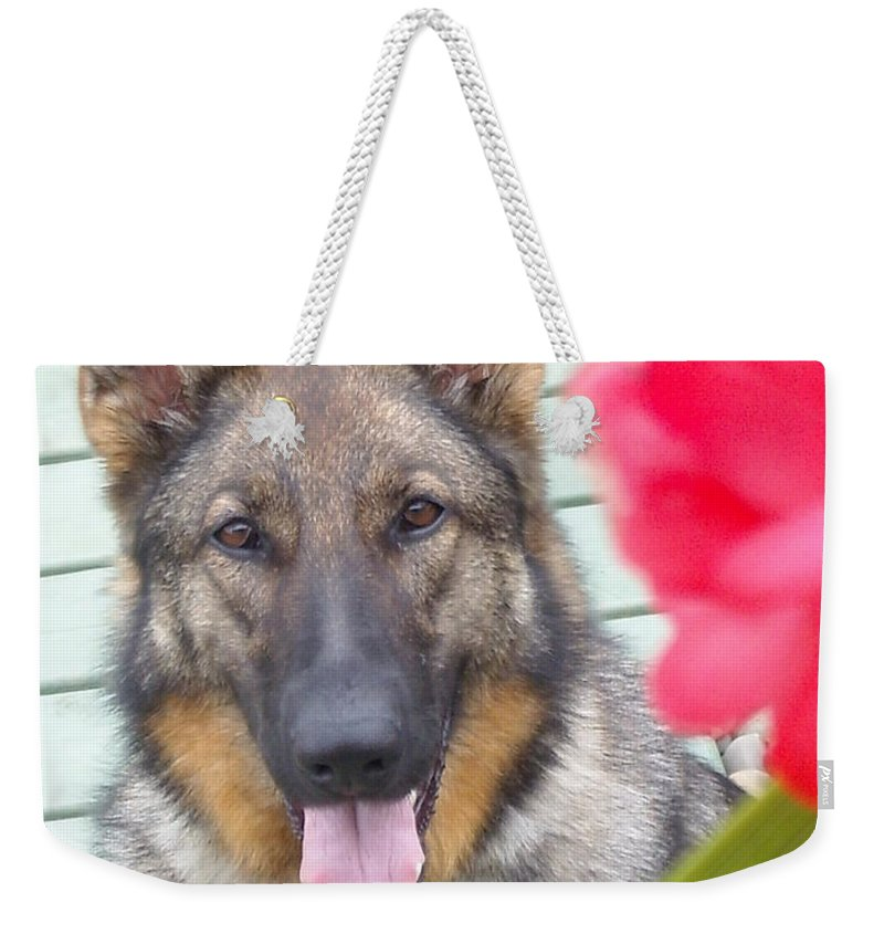 Dog Weekender Tote Bag featuring the photograph Foxy by Line Gagne