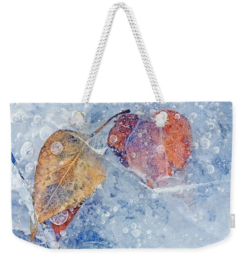 Ice Weekender Tote Bag featuring the photograph Fractured Seasons by Mike Dawson