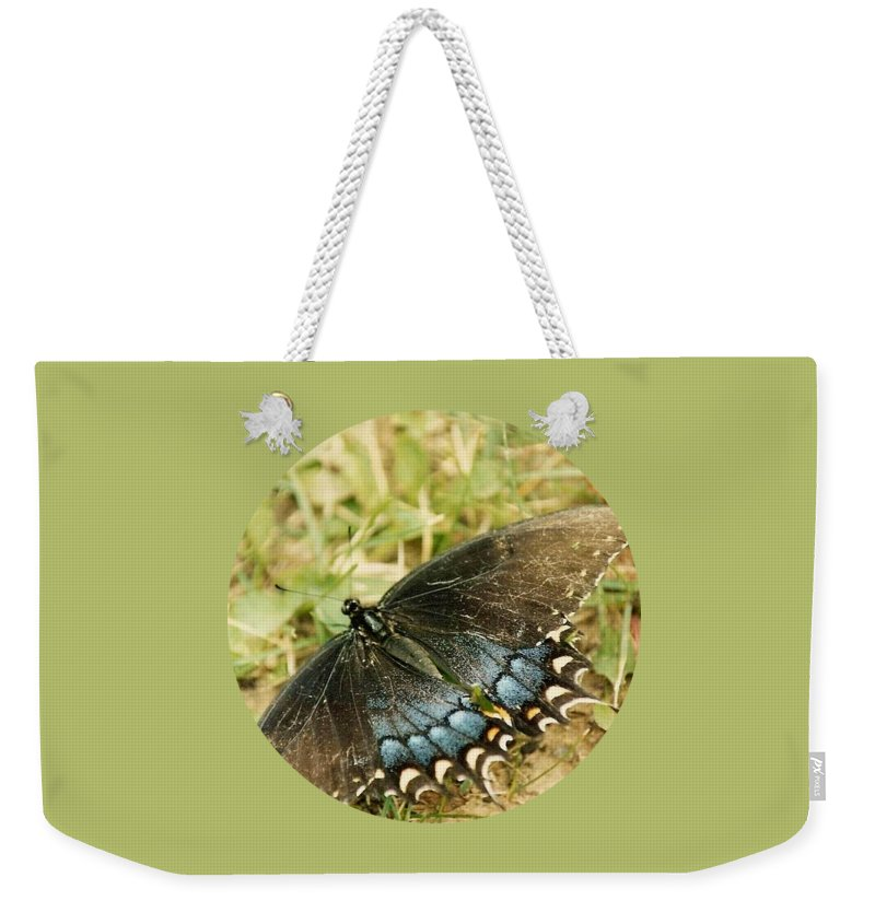 Butterfly Weekender Tote Bag featuring the photograph Fragile Beauty by Mary Wolf