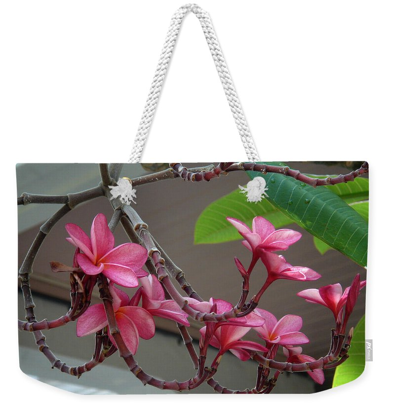 Flower Weekender Tote Bag featuring the photograph Frangipani Flowers by Susanne Van Hulst
