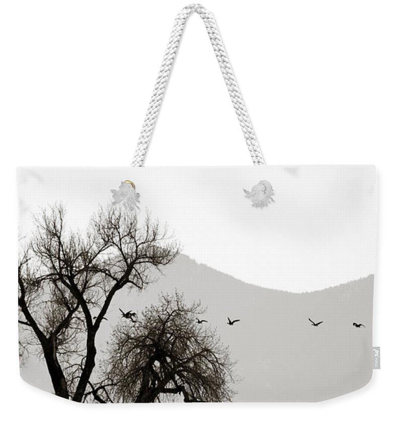 Horizon Weekender Tote Bag featuring the photograph Free Flying by Marilyn Hunt