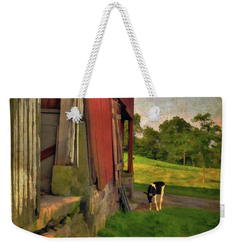 Animals Weekender Tote Bag featuring the photograph Free Range by Lois Bryan