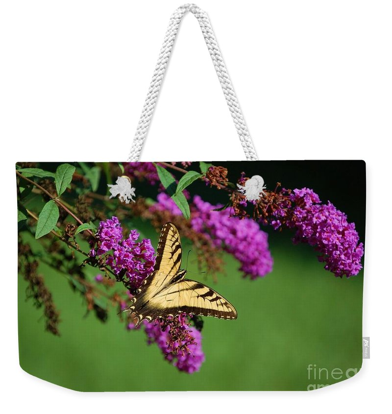 Butterfly Weekender Tote Bag featuring the photograph Freedom by Debbi Granruth